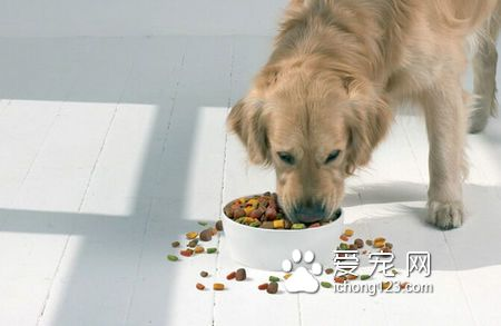 貴族狗糧是天然糧嗎 天然糧是不含防腐劑