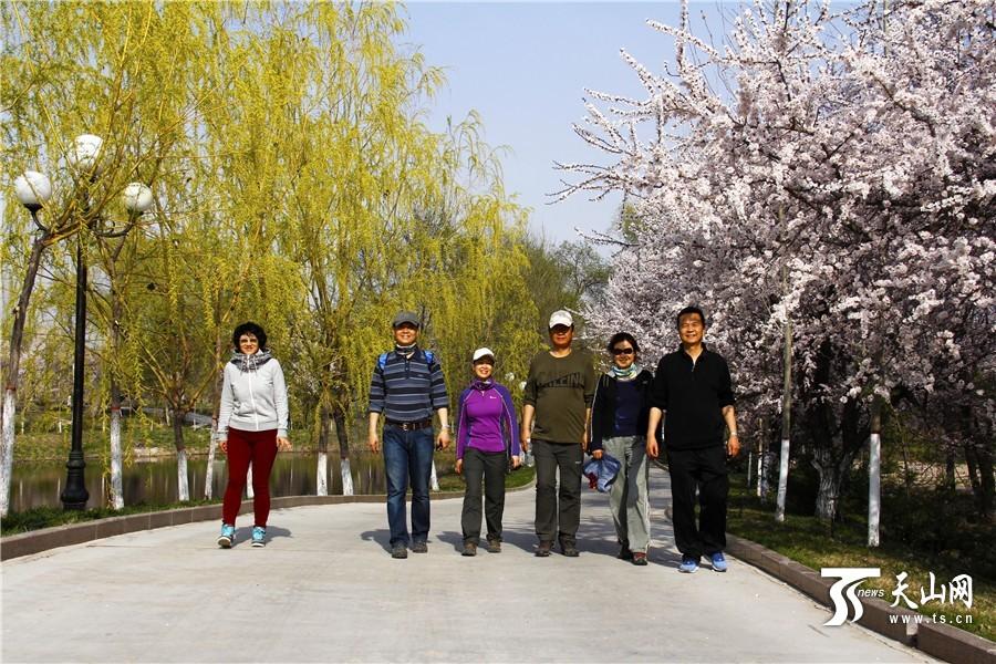 沉醉在伊宁县杏园 享受美好春光