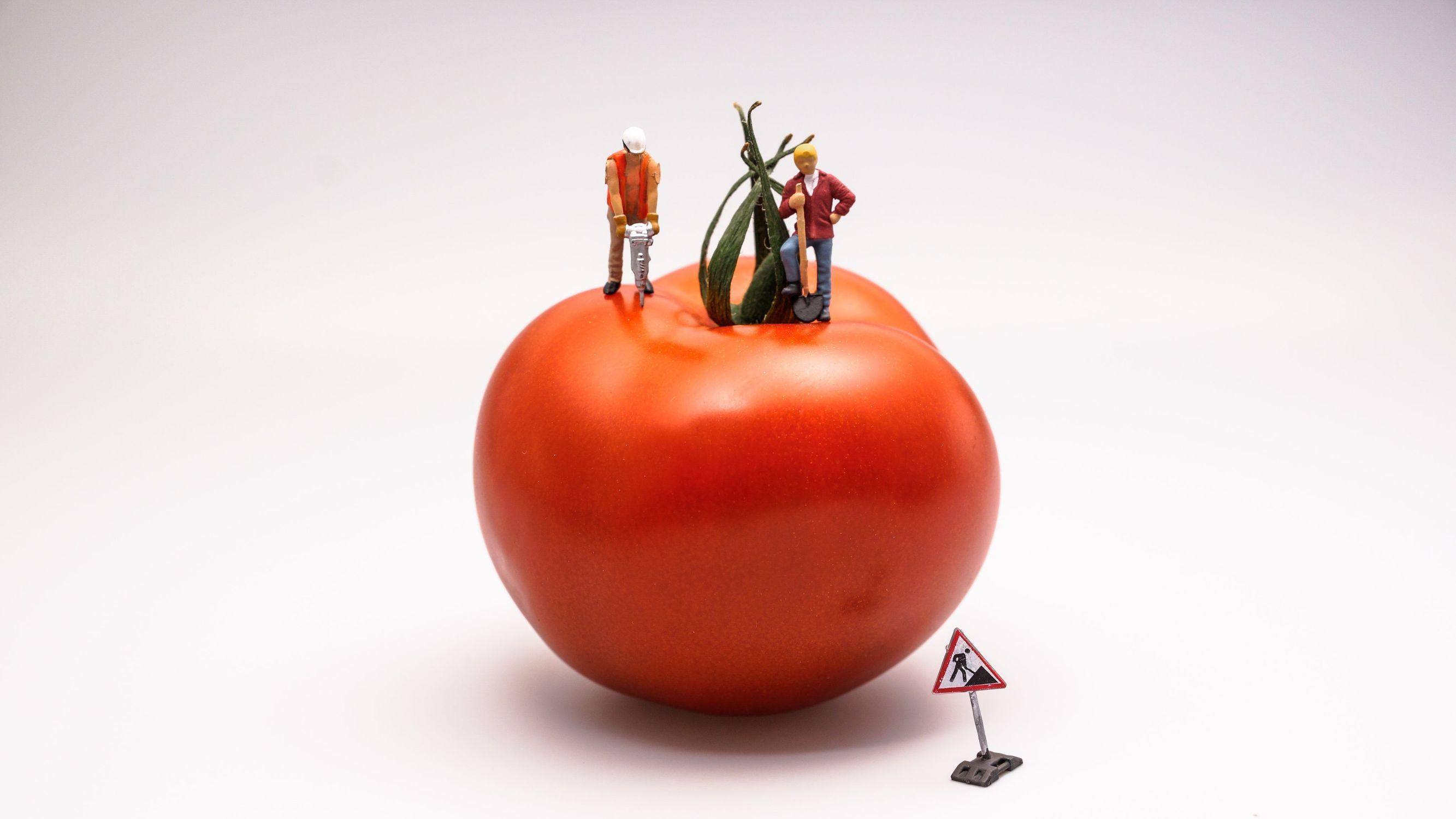 最简单的时间管理方法:番茄工作法