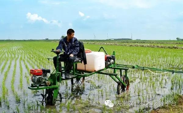 申請經營農藥如何登記?個體工商戶是否可以經營農藥?