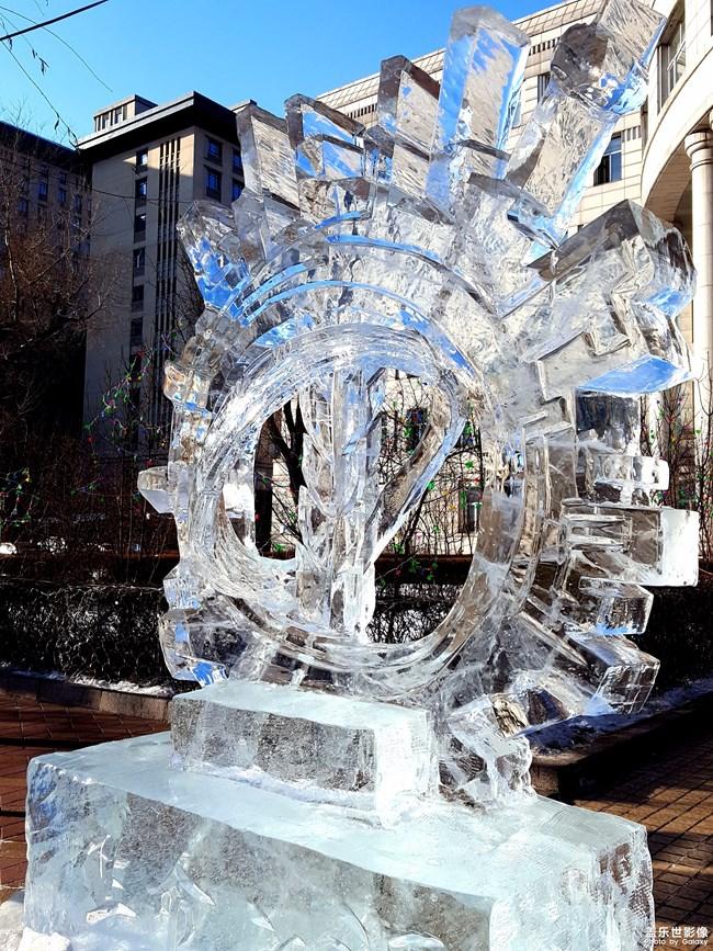 「不一样的冬 不一样的南北」+脉脉无言未忘情!
