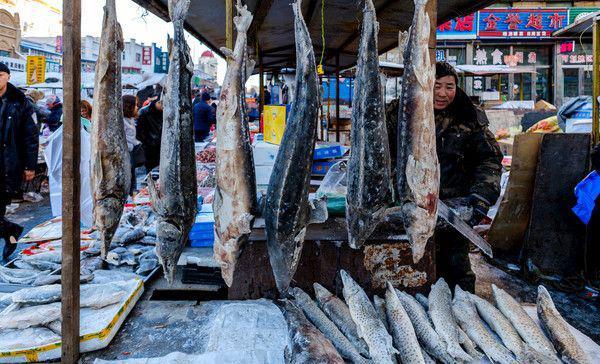 零下30度的东北菜市场,活鱼1分钟变冻鱼!冰棍鱼很吃香