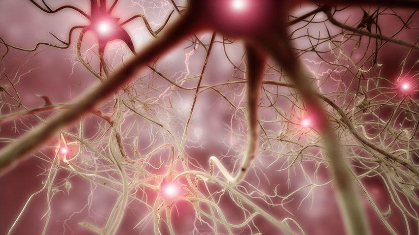 爆炸的大脑网络会导致慢性疼痛吗?