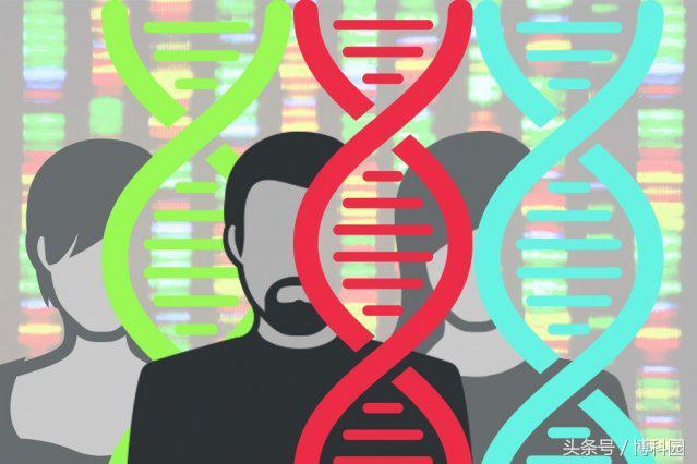 所有细胞的突变会导致面部特异性的出生缺陷