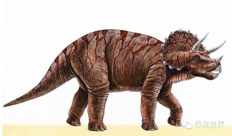 三角龙:犀牛一样的白垩纪食草恐龙