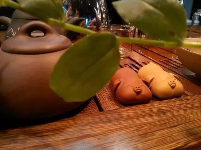 小米手机2摄影集:茶韵