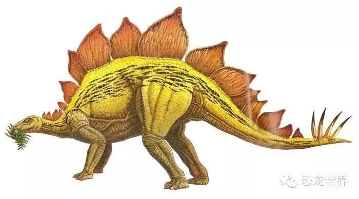 恐龙的生活与食性