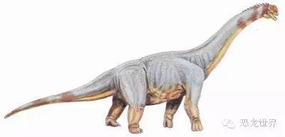 陆地上最大的恐龙TOP 10