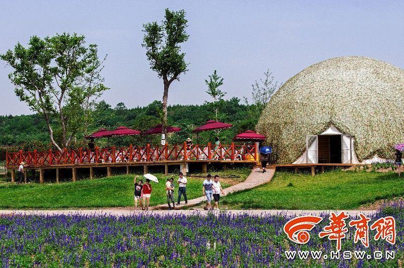 西部芳香园旅游专线开通 凭公交车票免费参观