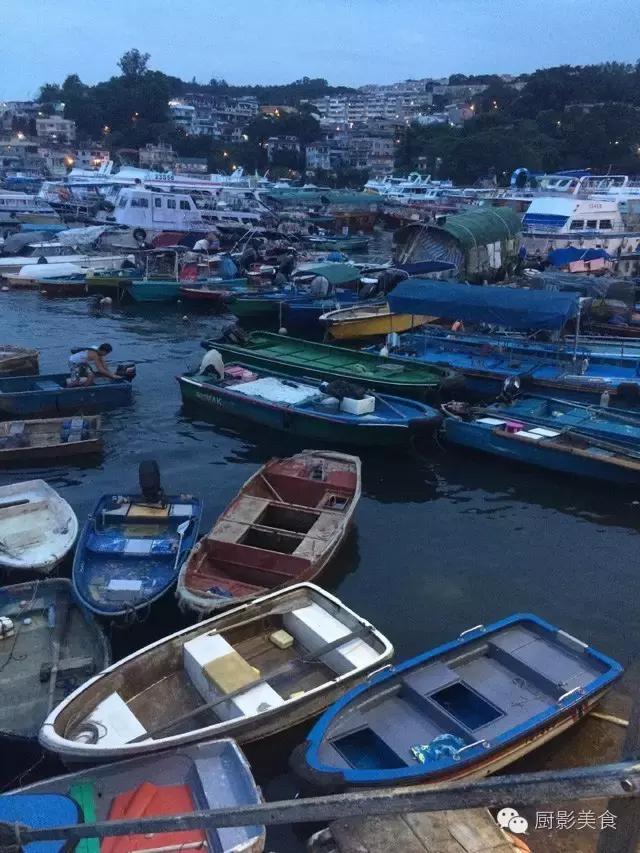 香港西贡海鲜市场,珍稀野生鱼类宝典! 食材宝典 第79张
