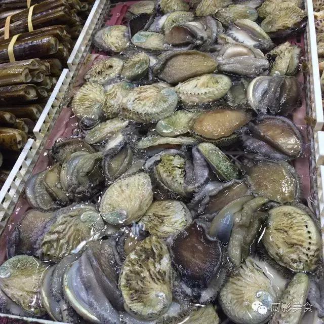 香港西贡海鲜市场,珍稀野生鱼类宝典! 食材宝典 第44张