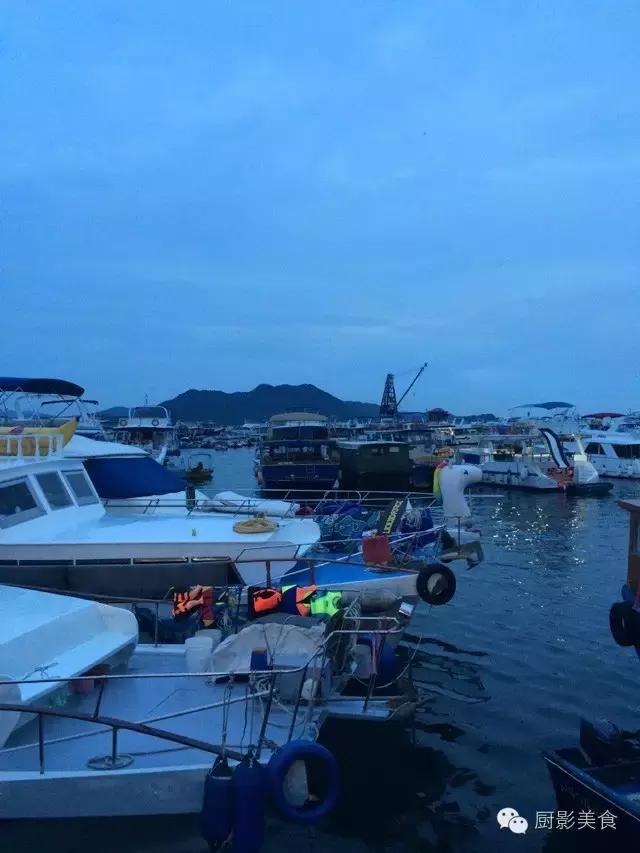 香港西贡海鲜市场,珍稀野生鱼类宝典! 食材宝典 第76张