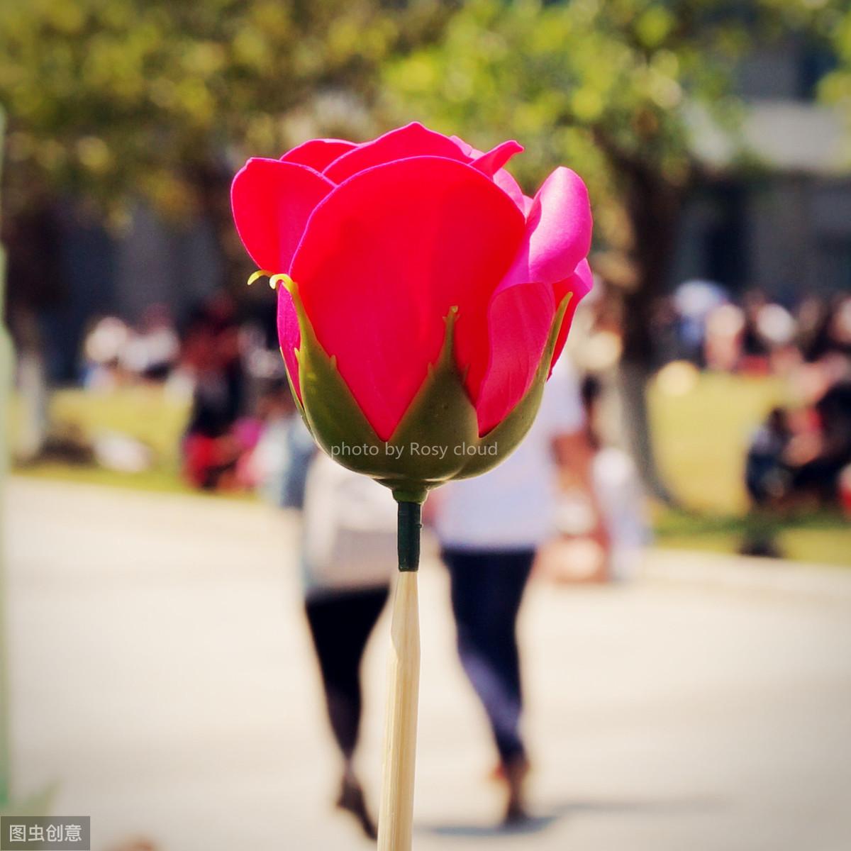 大学生恋爱,一场风花雪月,结果比过程更重要,要选对人