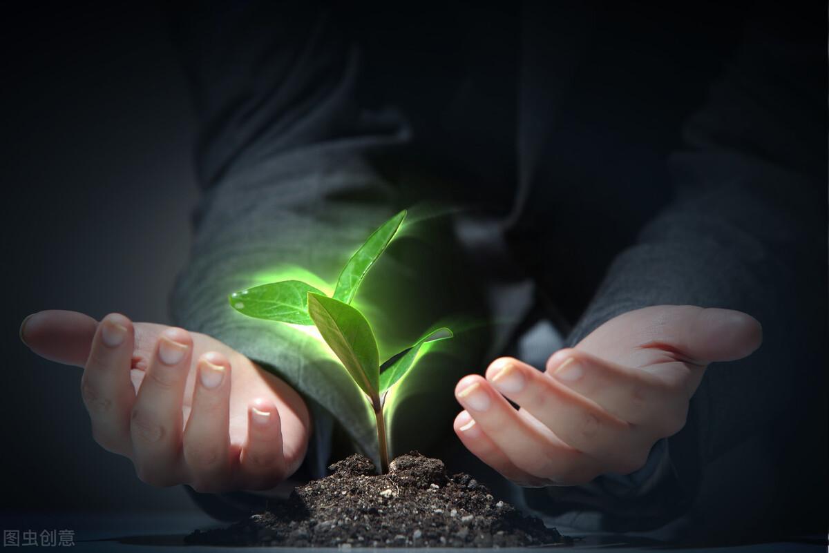 冰心在散文《谈生命》中将生命比作春水、小树,我们能收获什么?