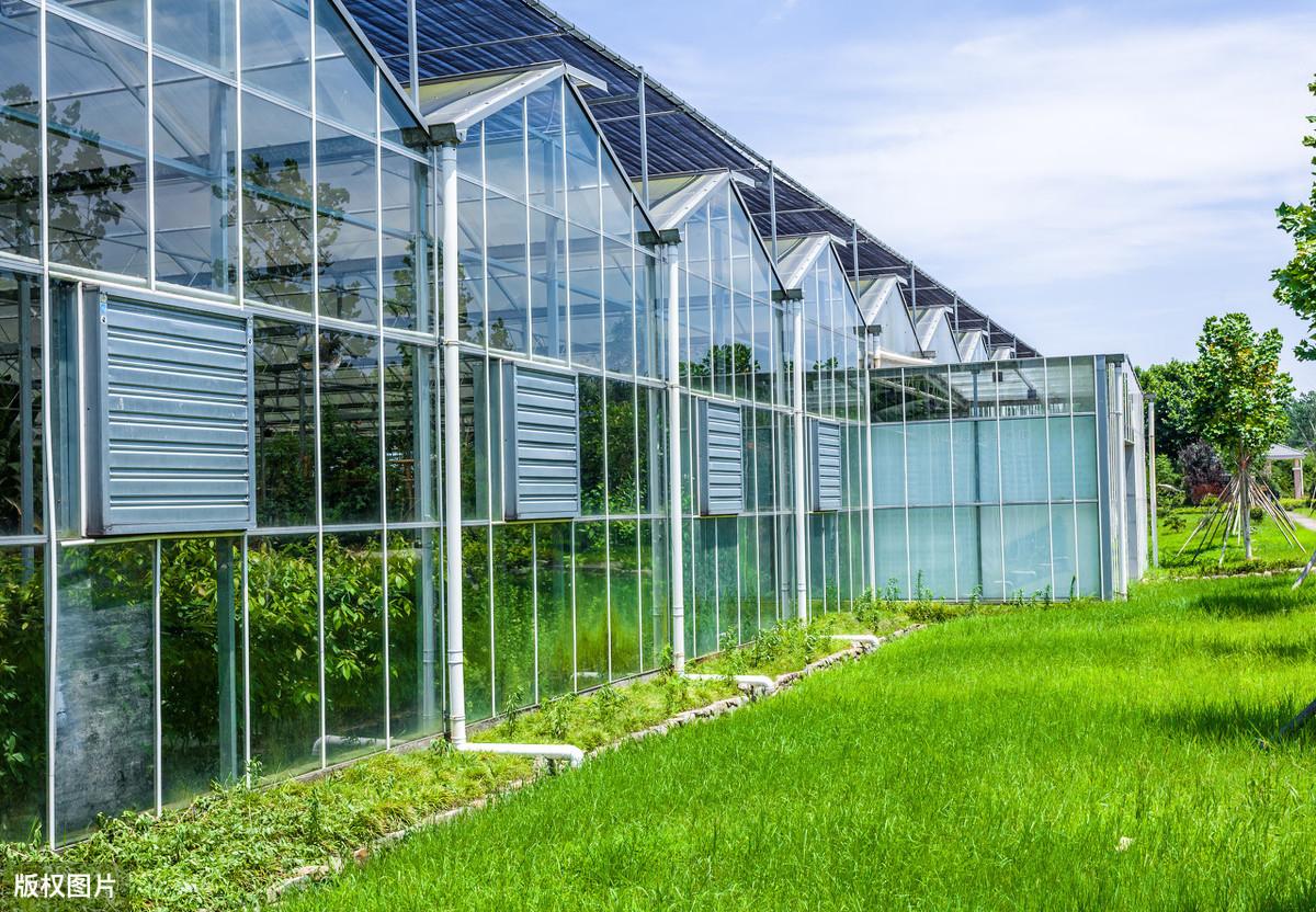 智能温室三大类该怎么选?该怎么建造?一亩地大棚投资造价如何