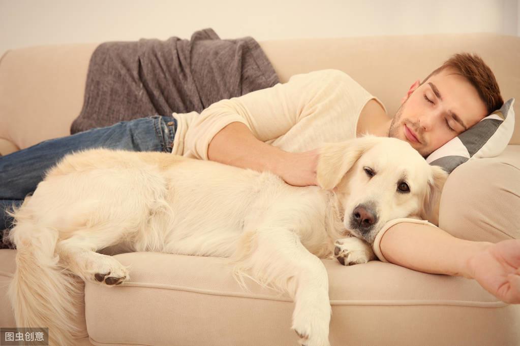 """当狗狗有这6种行为,说明你已是""""人生赢家""""了"""