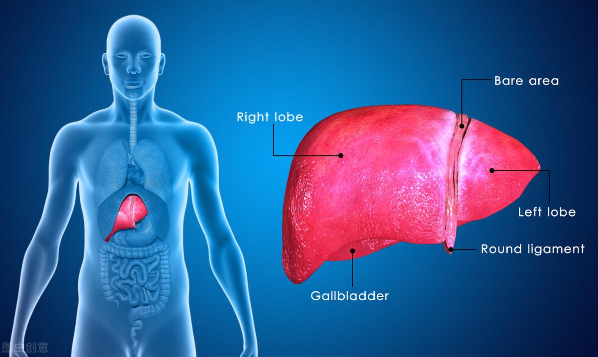 警惕身体这6处部位!如果出现变色,寓意着肝脏受损