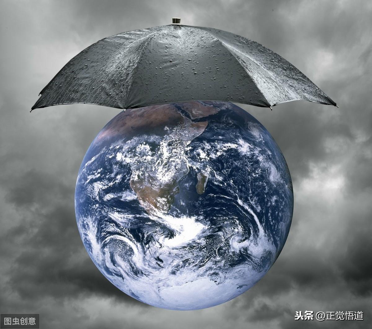保护动物 爱护环境 节约用水用电 节约粮食 节能减排 低碳出行 节约省钱 第2张