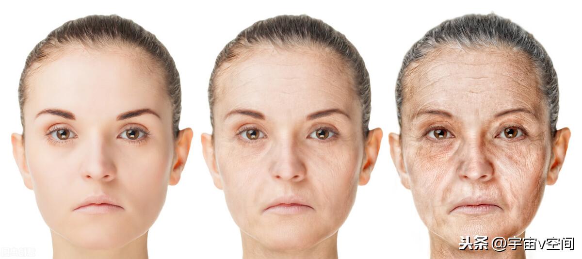 人为什么会衰老死亡,什么因素限制了你的寿命?