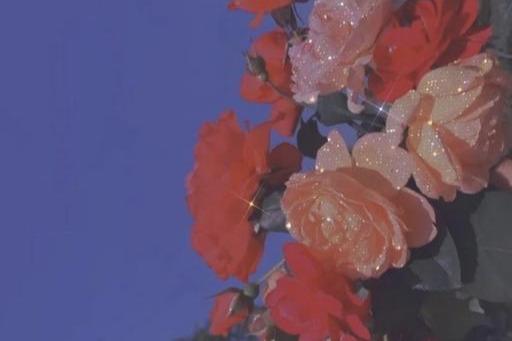20条适合中秋节发朋友圈的句子:月饼在身旁 随处是团圆