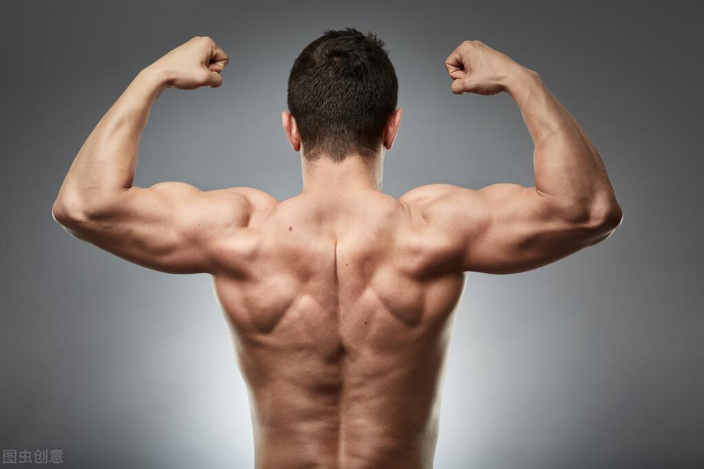 健身練背有多重要?6個背部力量動作,促進全身肌肉協調發展