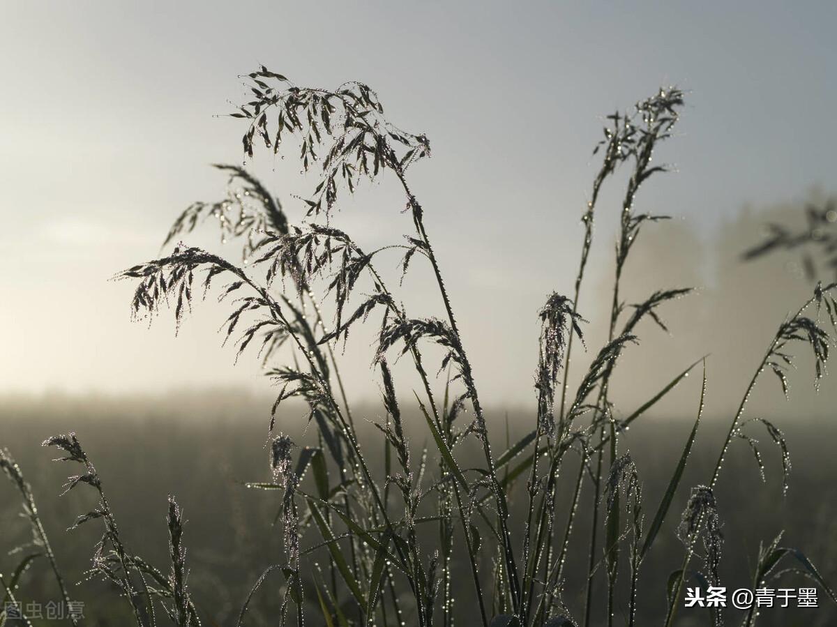"""秋风秋雨愁煞人——古代文人的""""悲秋""""情结"""