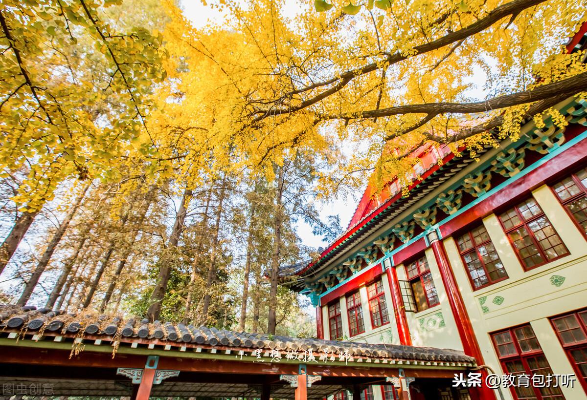 南京师范大学现任领导班子,多人毕业于本校博士