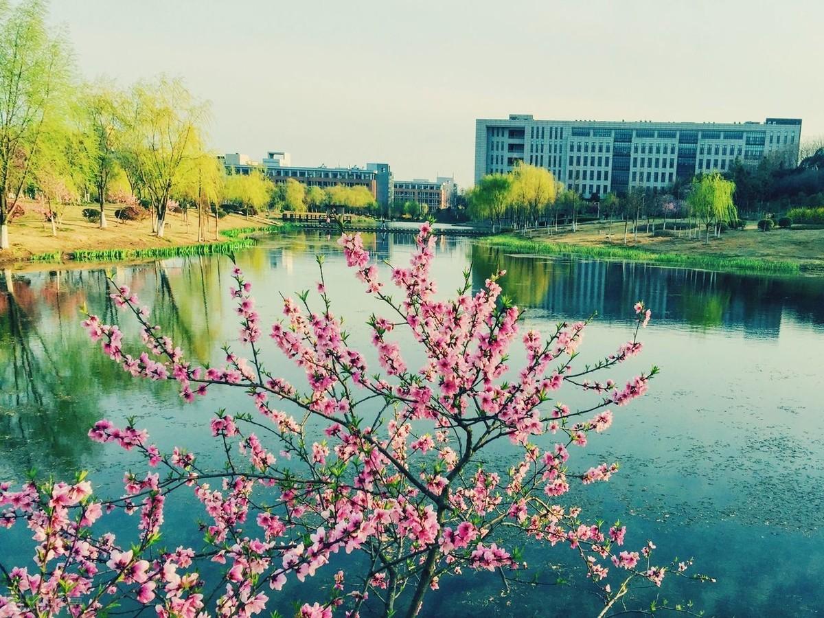 江苏大学是几本(江苏大学考研难吗)