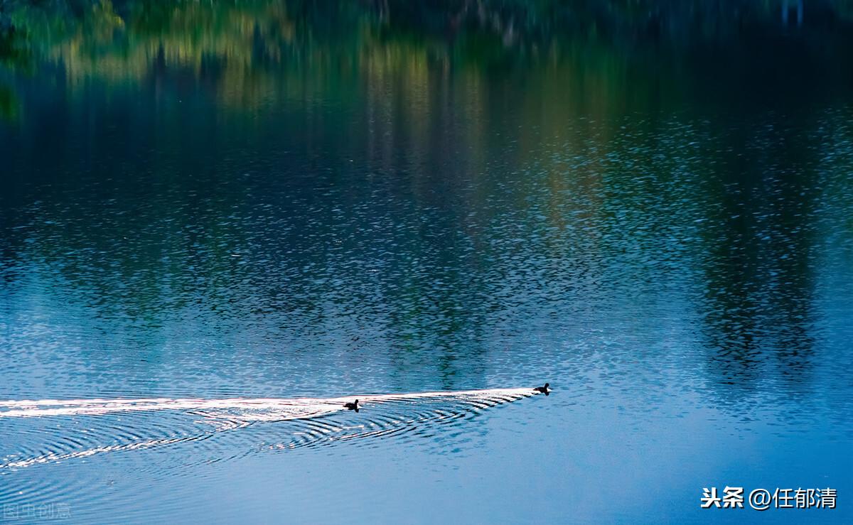 感伤的行旅,擦干眼角的泪,游余渠河记趣