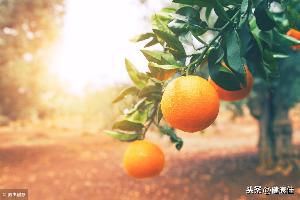 橘子全身都是宝,一个橘子功效等同五味药 中医养生 第3张