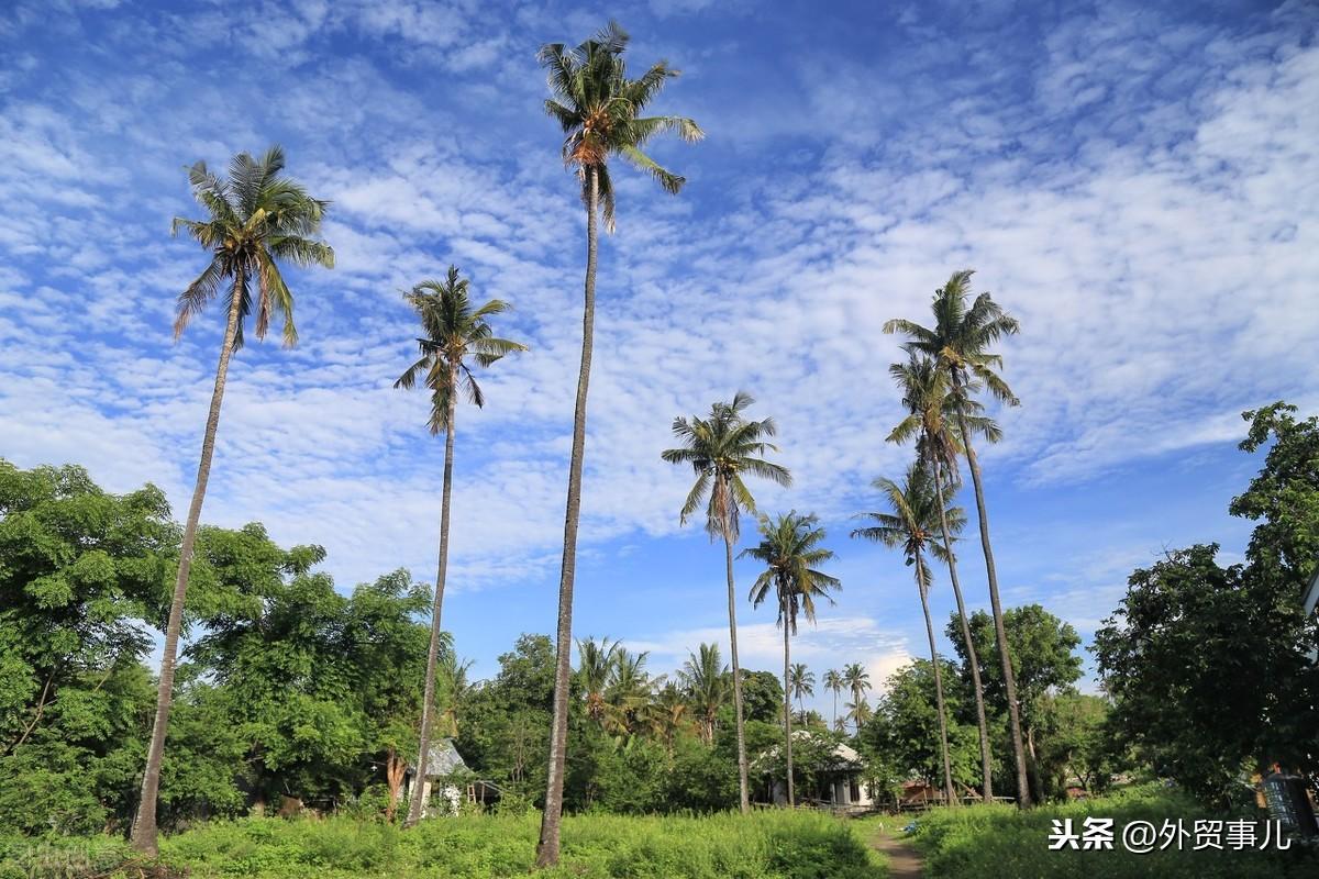印度尼西亚外贸和国际市场通关指南