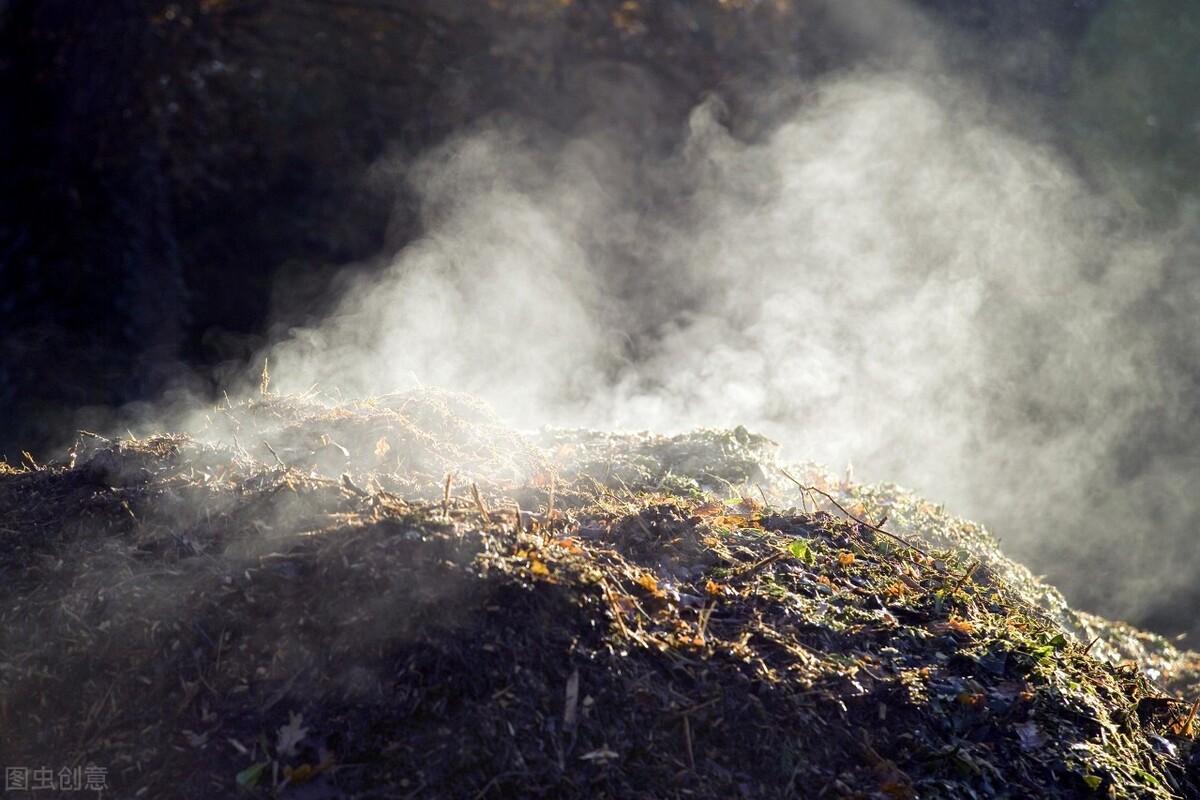 水产养殖中微生物是唯一分解有机残骸的角色吗