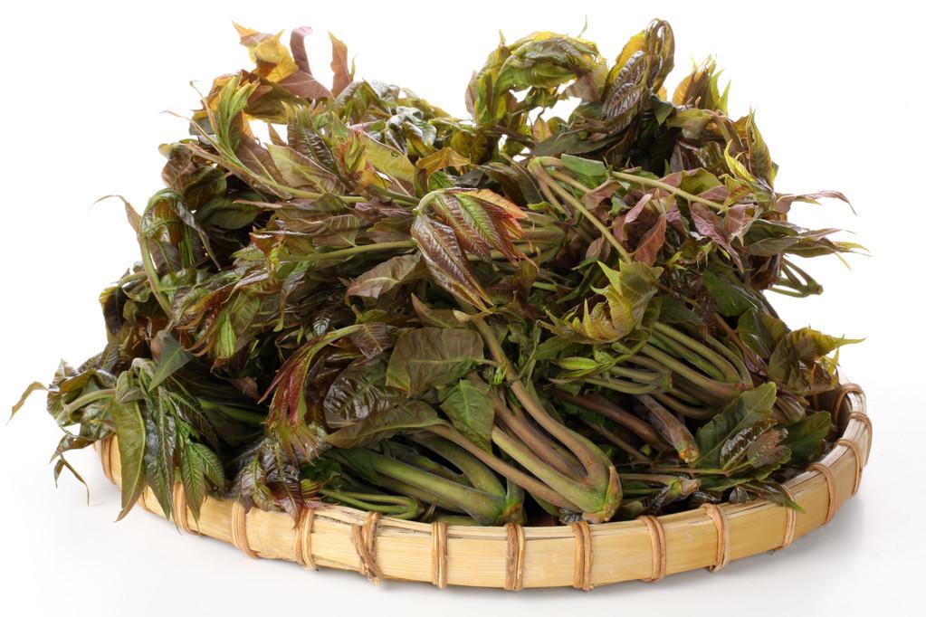 南方折耳根与北方香椿芽,哪一种春菜让你又爱又恨