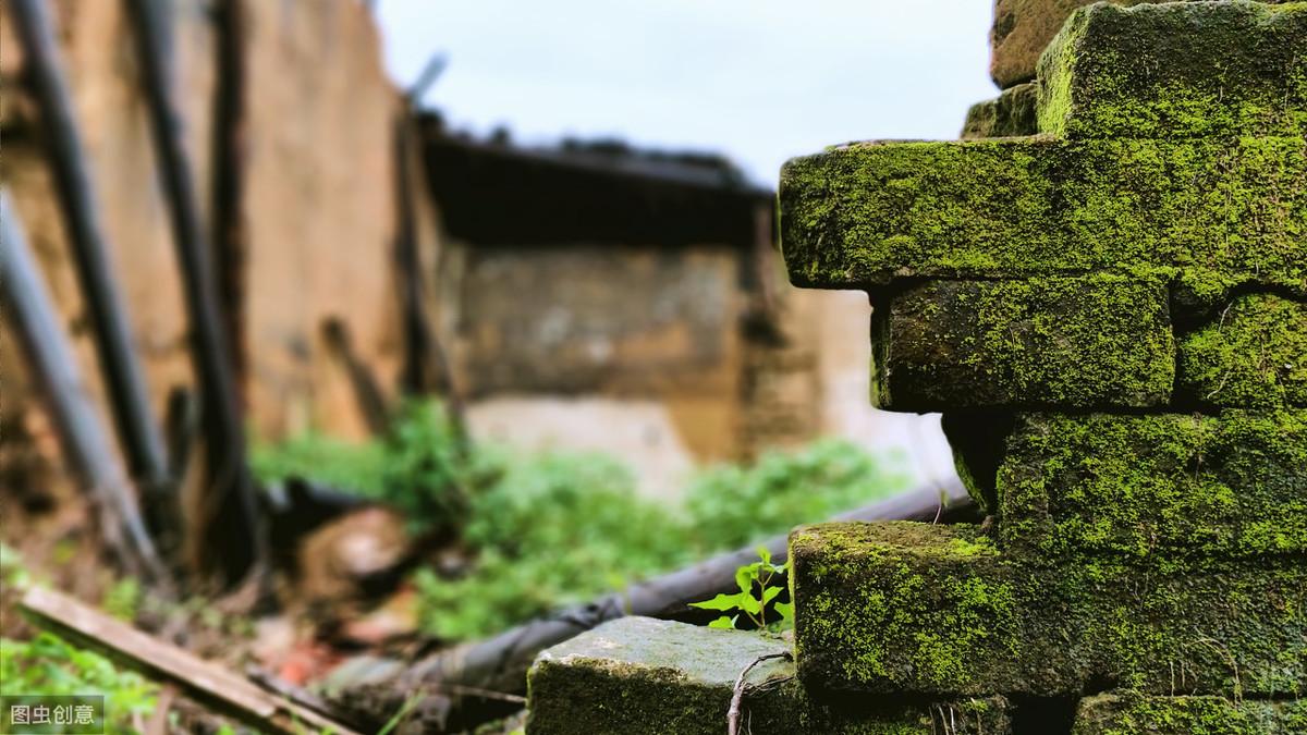 赵匡胤的七世孙的墓中发现了什么?带你了解南宋的丧葬习俗