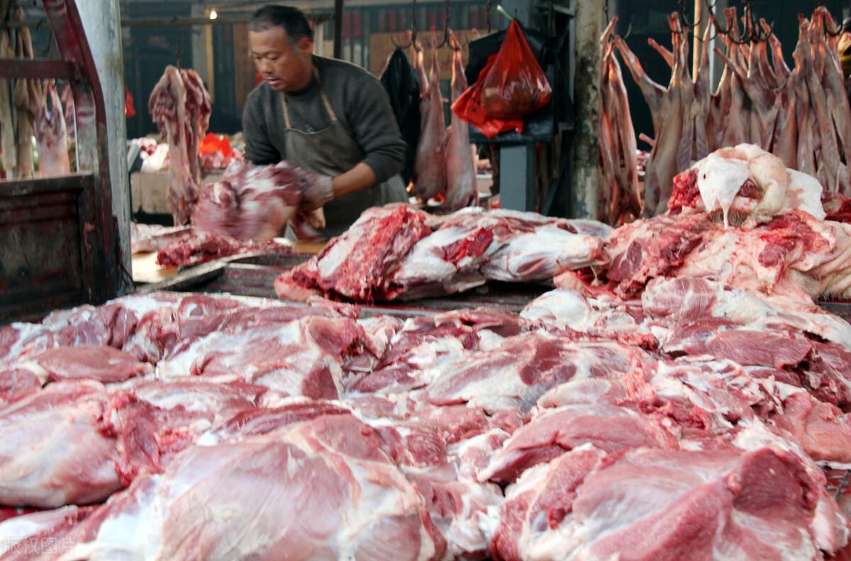 """猪价有""""危险""""?华北,东北相继飘绿,猪价又要跌?附:最新猪价"""
