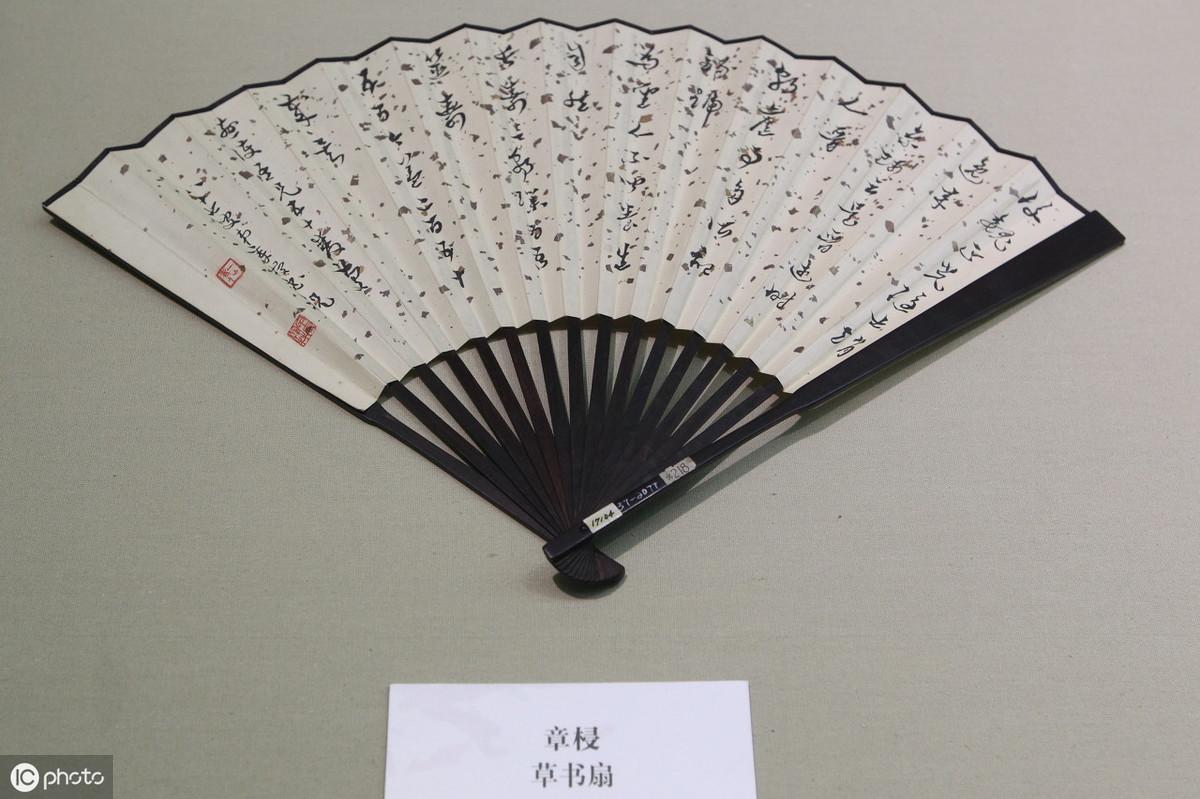 初中语文容易读错的字,看看有你不会读的吗