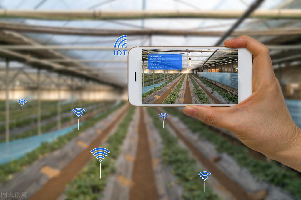 重点!猕猴桃+二维码=农业互联,农民学会大数据,今天它来了