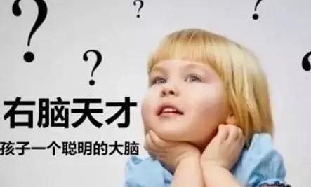 孩子全脑教育