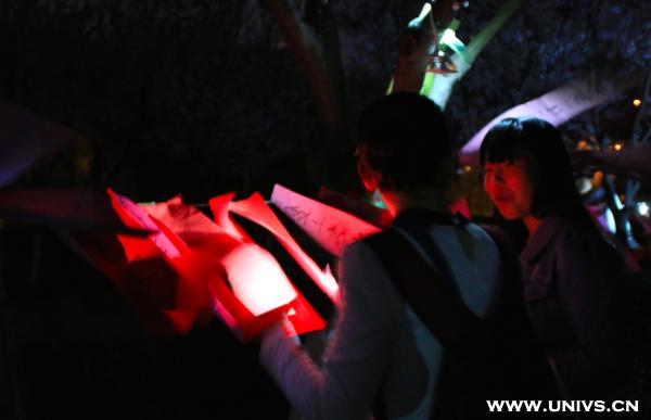 月下长安花香:长安大学地球一小时主题夜市