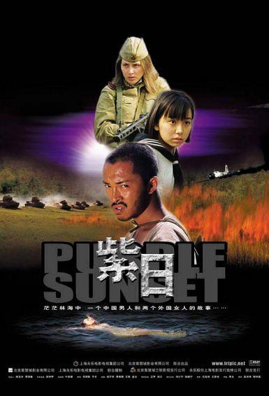 2001高分战争剧情《紫日》HD1080P.国语中字