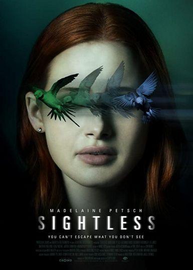 2020美国惊悚《迷盲/视而不见》BD1080P.中字
