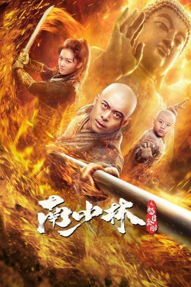 2021樊少皇动作《南少林之怒目金刚》HD4K/1080P.国语中字