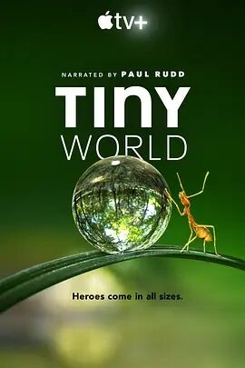 小小世界第一季