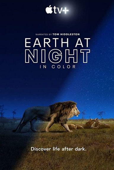 2020高分纪录片《夜色中的地球》HD1080P.中英双字