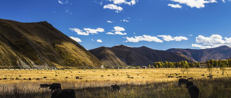 秋日自驾川西秘境这几个景点,迷醉在川西高原色彩斑斓的金秋