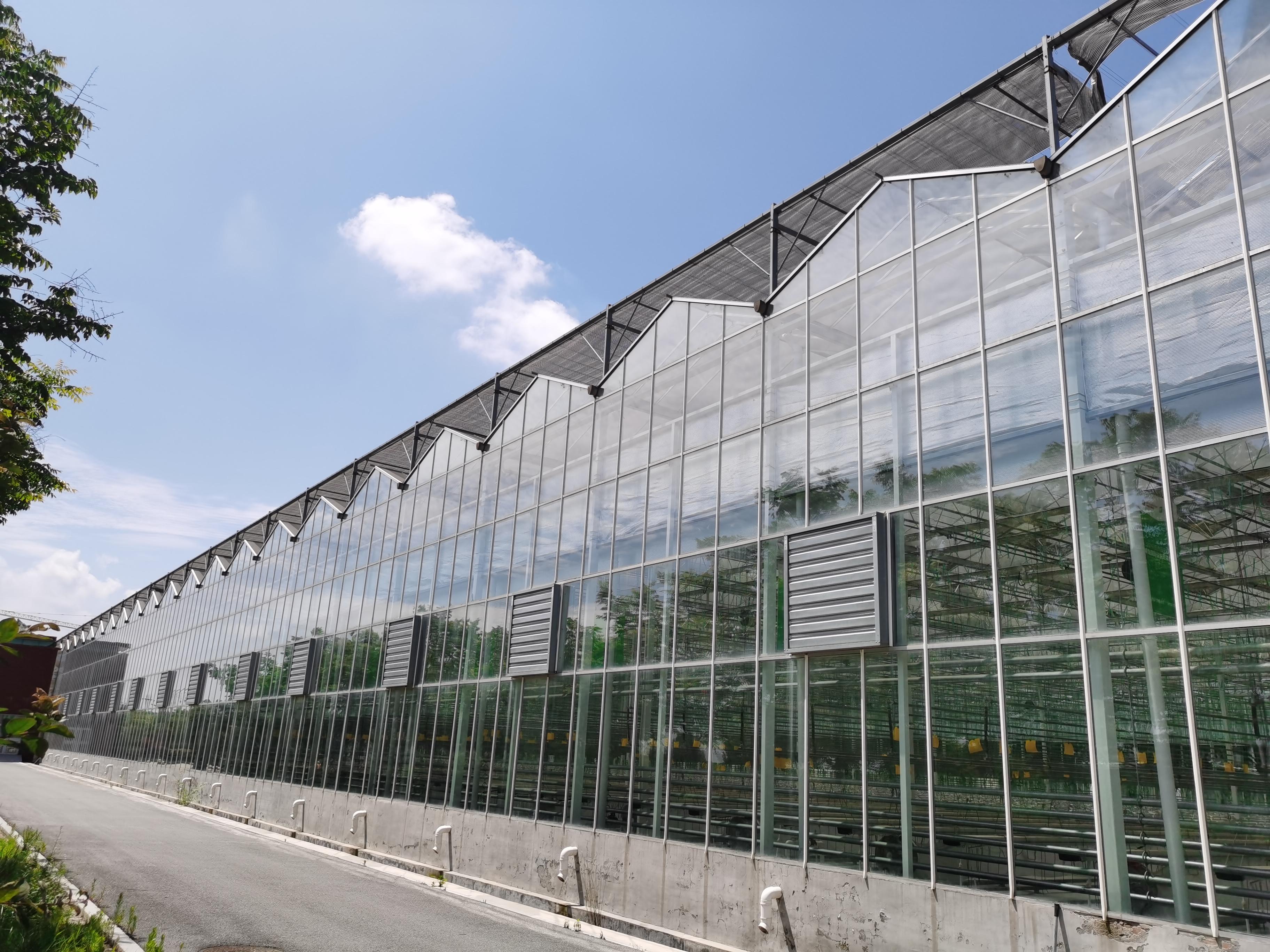 什么是全玻璃连栋温室大棚?全玻璃温室大棚顶部玻璃安装方式
