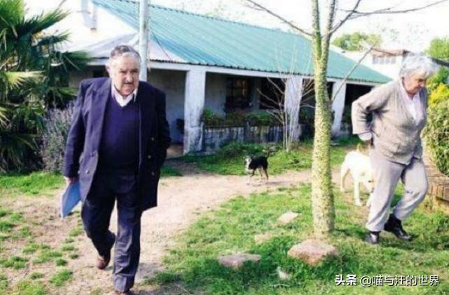 全球最穷总统:睡木板房,开拖拉机耕地,保镖仅2名警察和1条狗