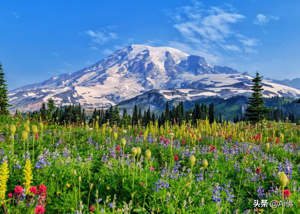 美国最受欢迎的50个国家公园