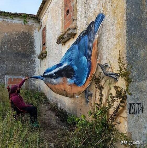 葡萄牙立體繪畫大師火了,廢墟中的3D涂鴉被允許進入城市廣場