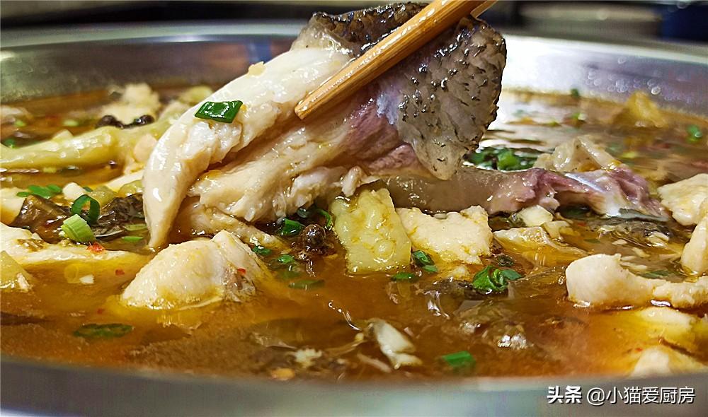 苦瓜别再炒着吃了 用它和鱼一起做 味道麻辣鲜香 不苦也不燥
